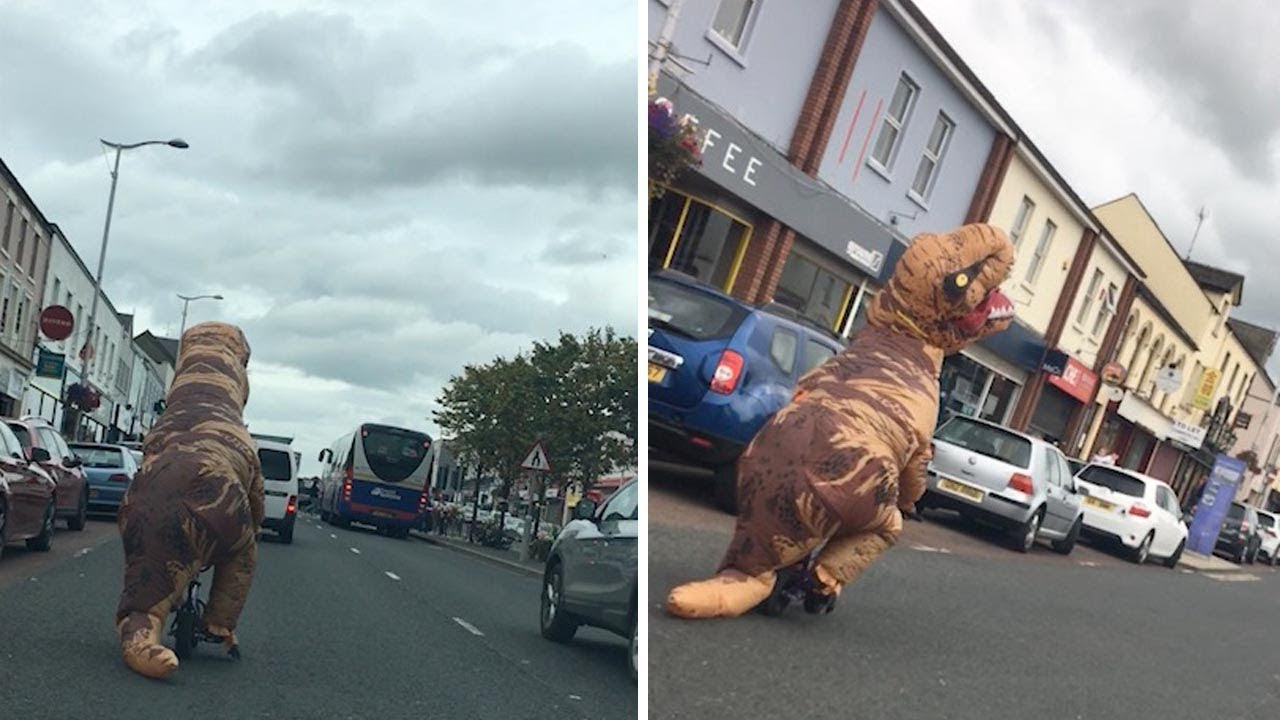 T-Rex Spotted Riding Bicycle Down Road 4
