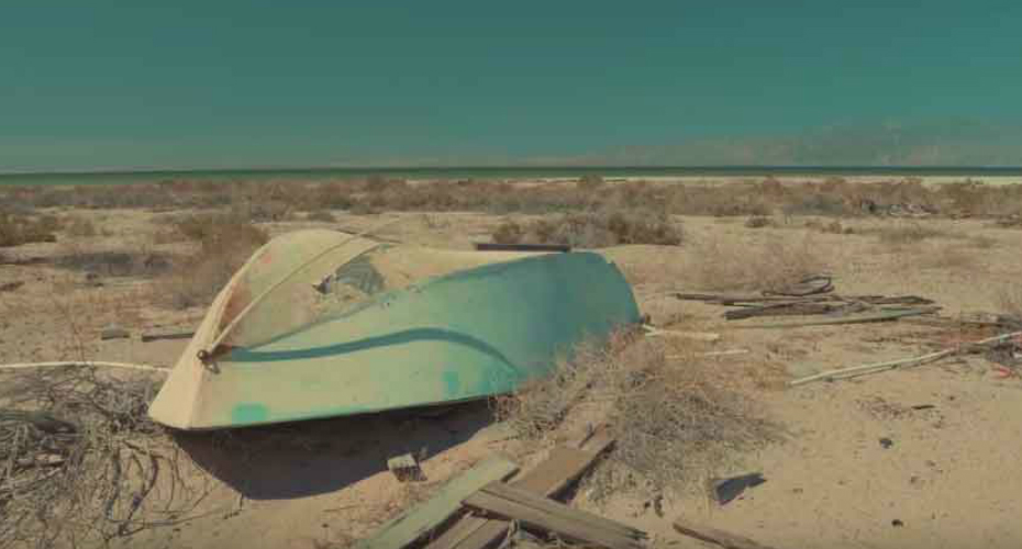 Salton Sea: From Relaxing Resort to Skeleton-Filled Wasteland 9