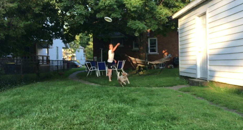 This Dog's Terrifically Awful Slow Motion Frisbee Fail Is So Bad It's Good 6
