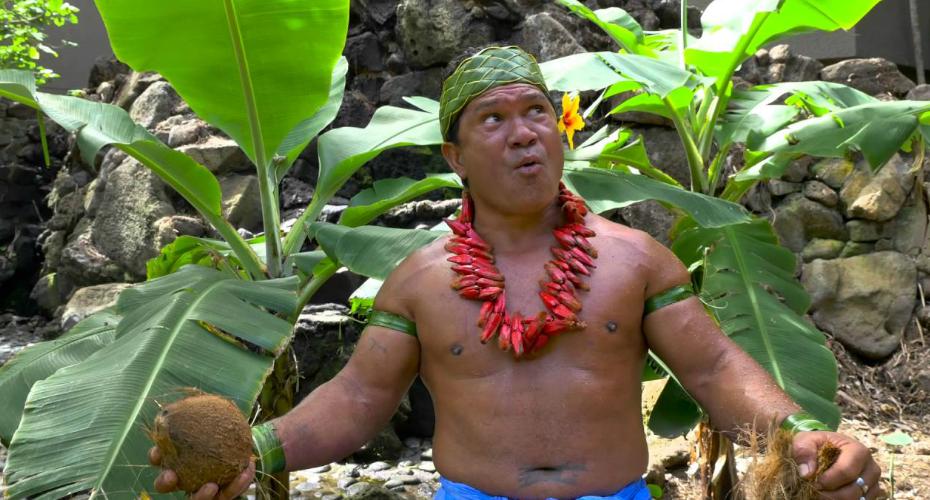 Husking a Coconut Like a Boss 3