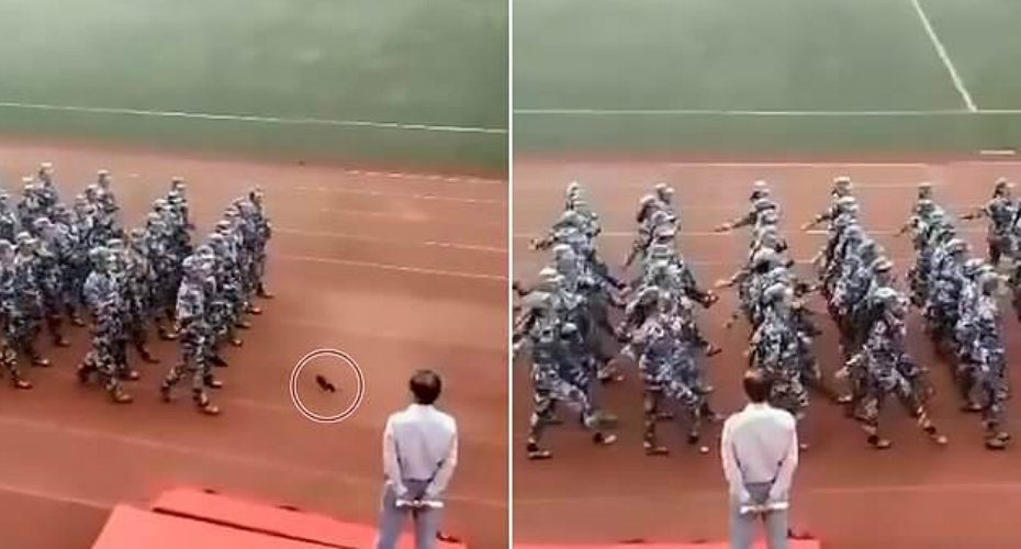 Girl Loses Shoe During Marching Performance But Manages To Slip It Back On Without Breaking Stride 1