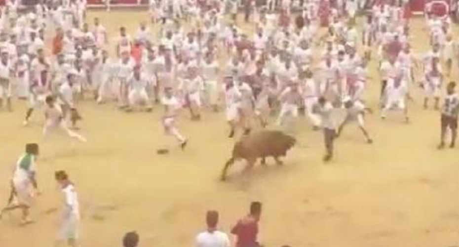Man Performs Spectacular Flip Over a Charging Bull 2