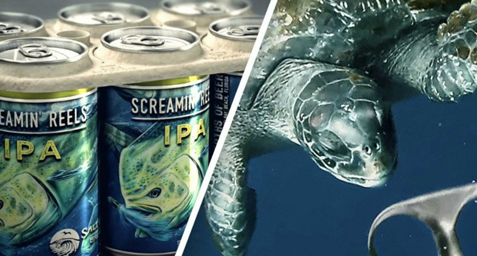 Brilliant Brewery Makes Biodegradable, Edible Six-Pack Rings That Feed Marine Animals 6