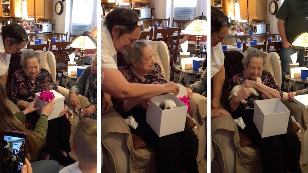 Great Grandma Surprised With New Puppy 7