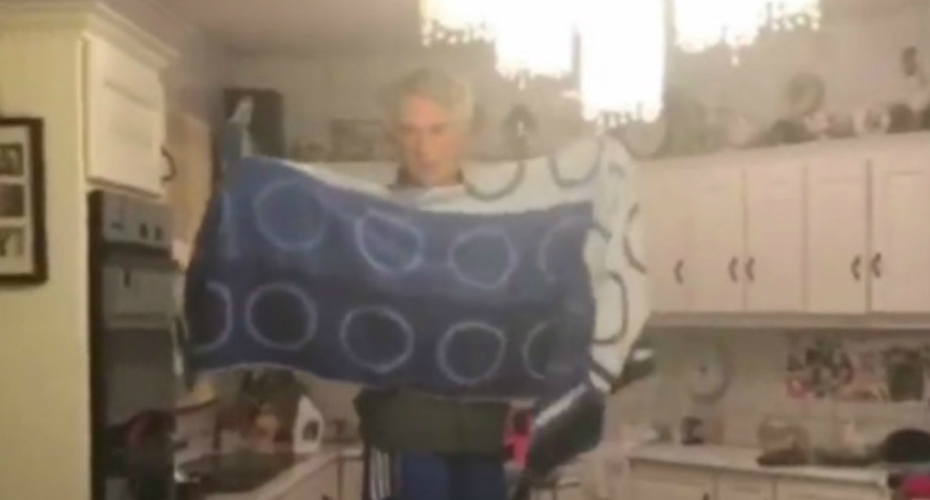 This Video Of An Irish Family Struggling To Deal With a Bat In Their House Is Going Viral 2