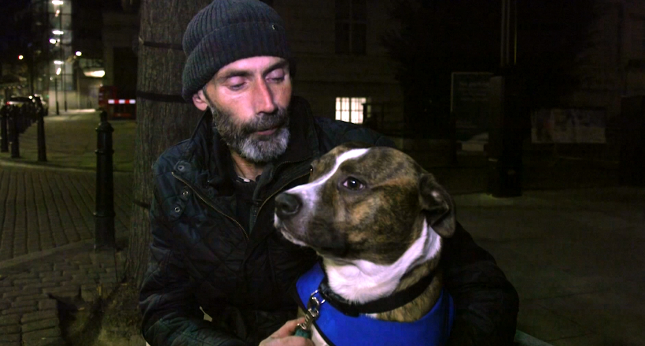 Dogs On The Streets: How Four-Legged Friends Help The Homeless 2