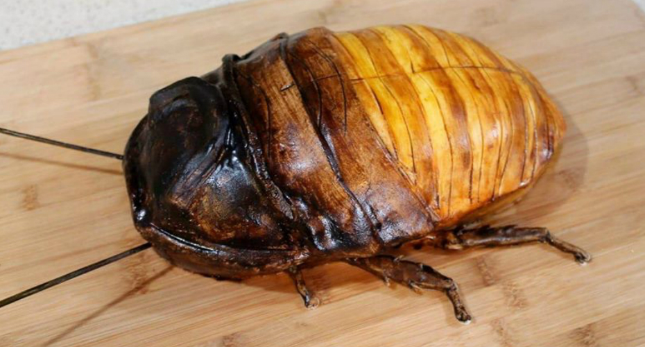 If You Encounter This Giant Cockroach, Don't Call An Exterminator, Just Grab A Fork And Dig In! 4