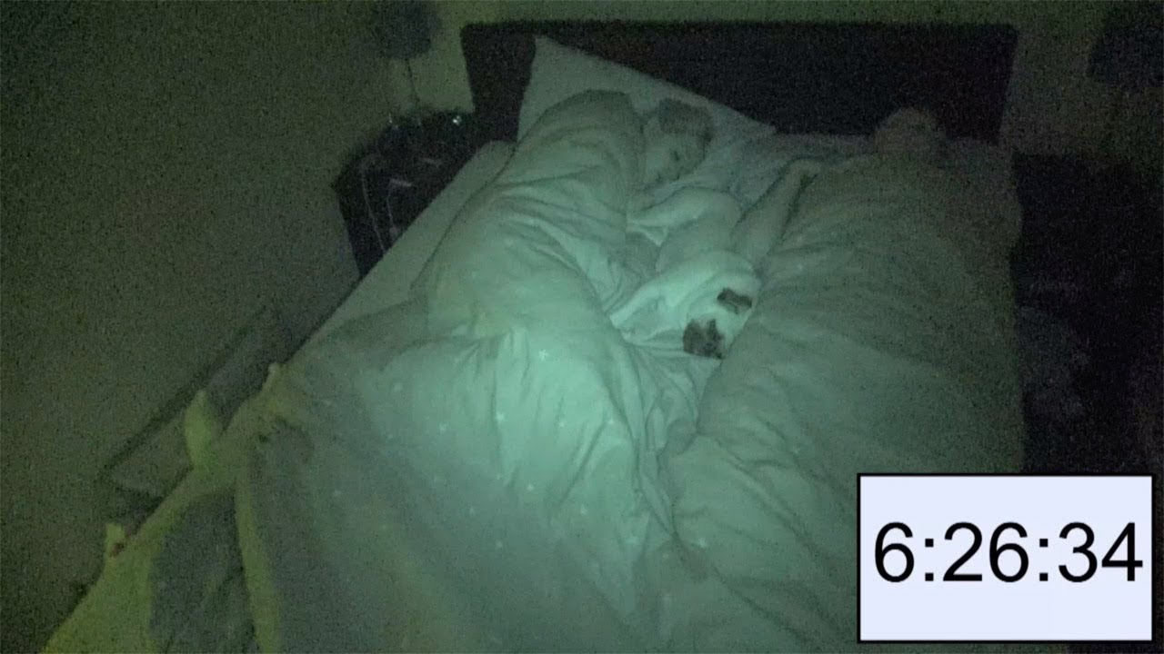 Time-Lapse Shows What Its Like To Share Bed With A Pug 1