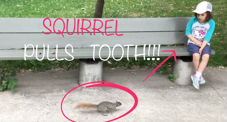 Dad Pulls Out Daughter's Loose Tooth With A Wild Squirrel 8
