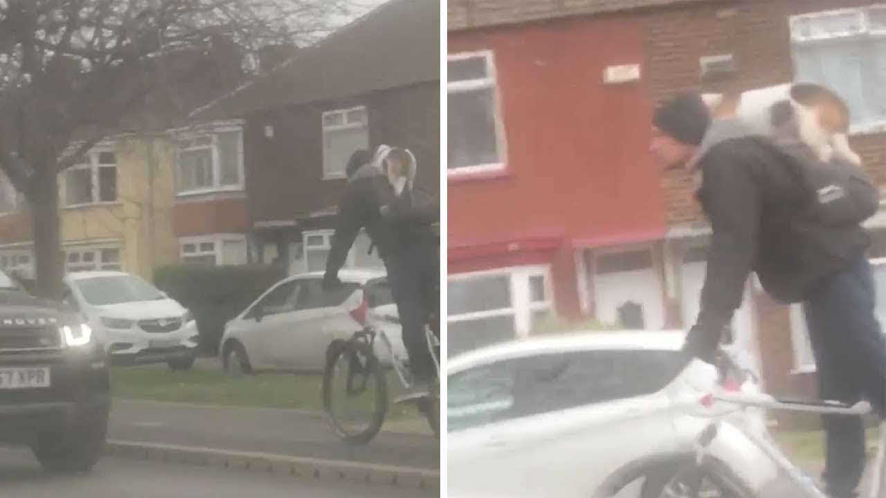 Cyclist Gives Dog A Piggyback 7