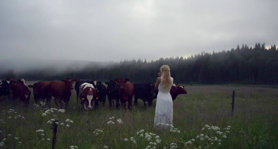 Woman Sings Ancient Swedish Song To Call The Cows 4